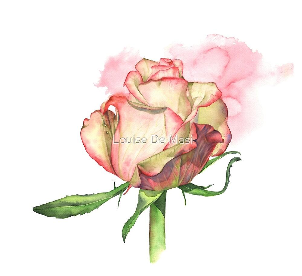 Rose by Louise De Masi