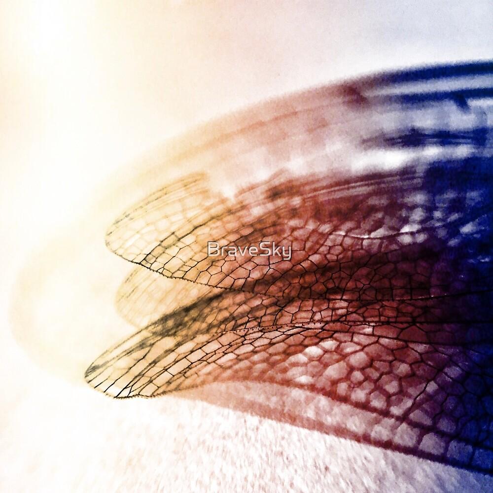 dragonfly wing by BraveSky