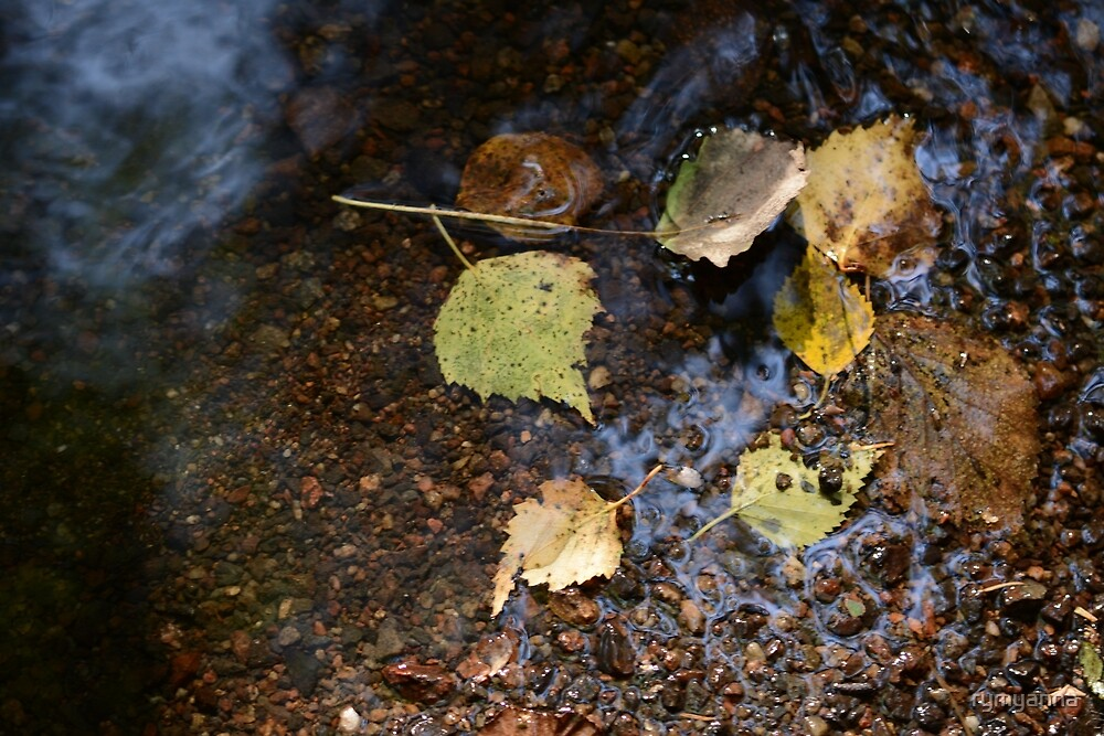 Leaves Under Water by rymyanna