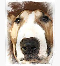 """""""Red Bull""""  - Bull Terrier Poster"""