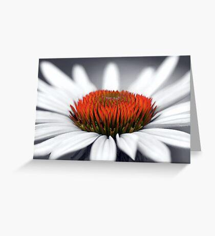 Echinacea Heart Greeting Card