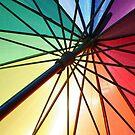 Sun Shade by John Dalkin
