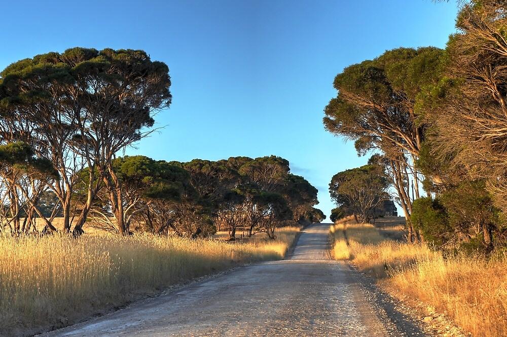 Gap Road2 by Dean Wiles