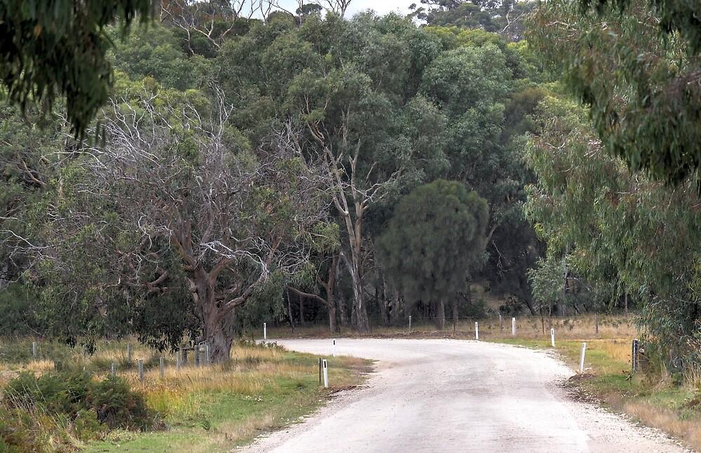 North Coast Road3 by Dean Wiles
