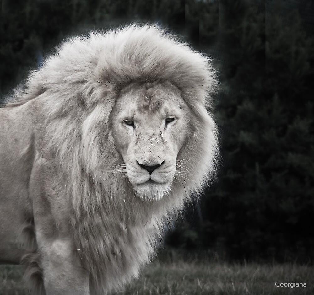 White Lion by Georgiana