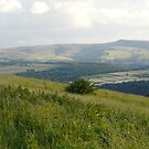 The Pennines... by Freya  Sykes