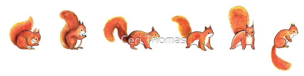 Red squirrel scarf by lookintonature