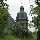 Ujazdowski Castle by delfinada