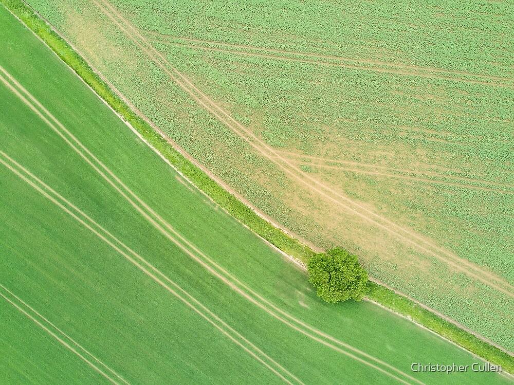 Suffolk Fields #1 by Christopher Cullen