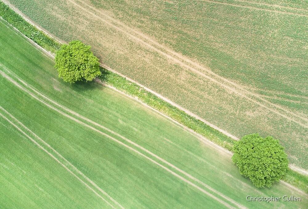 Suffolk Fields #6 by Christopher Cullen