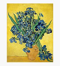 Vincent van Gogh - Irises, 1890  Photographic Print