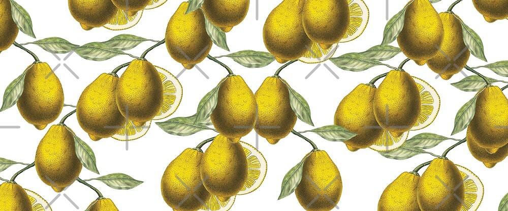 Citron by hyggenok