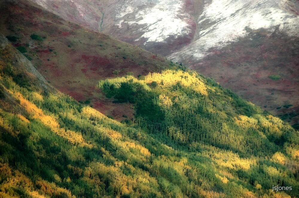 Autumnal by jsjones
