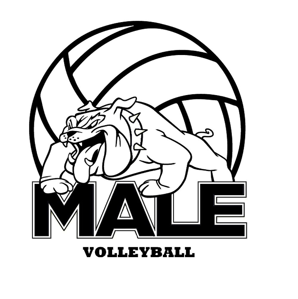 Male Volleyball by Craig473