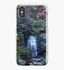 Meigs Fall III  iPhone Case/Skin
