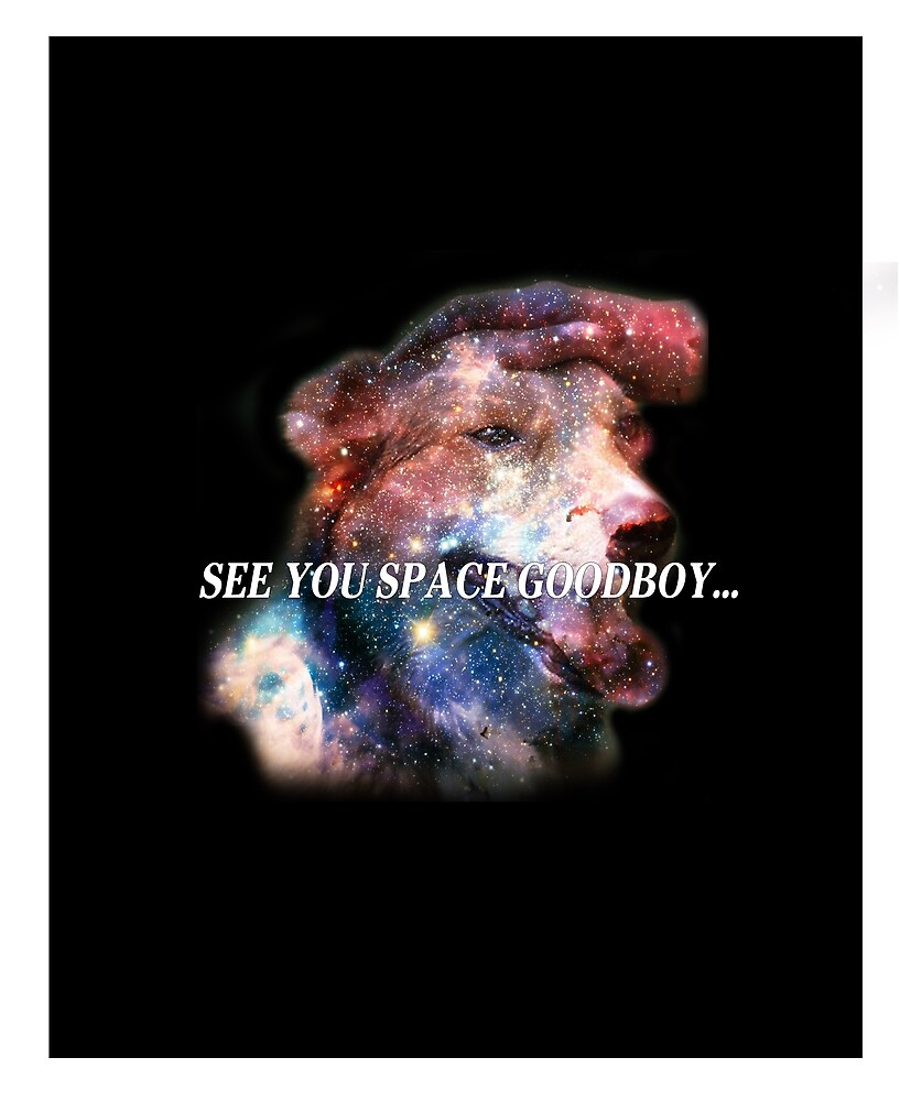 SEE YOU SPACE GOODBOY... by Humberdale