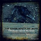 The Raven Quoth No More by 1moonlitgoddess