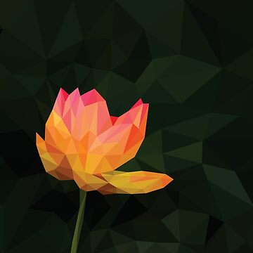 Low Poly Water Lily Flower by DigitalShards