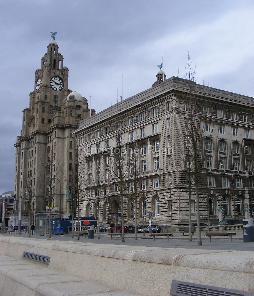 Liverpool Liver building  by Christopher Ryan