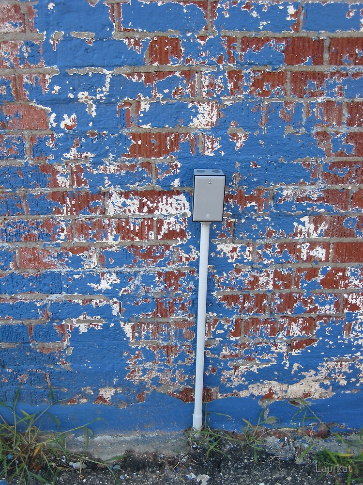 old auto parts store wall in summer by Laurkat
