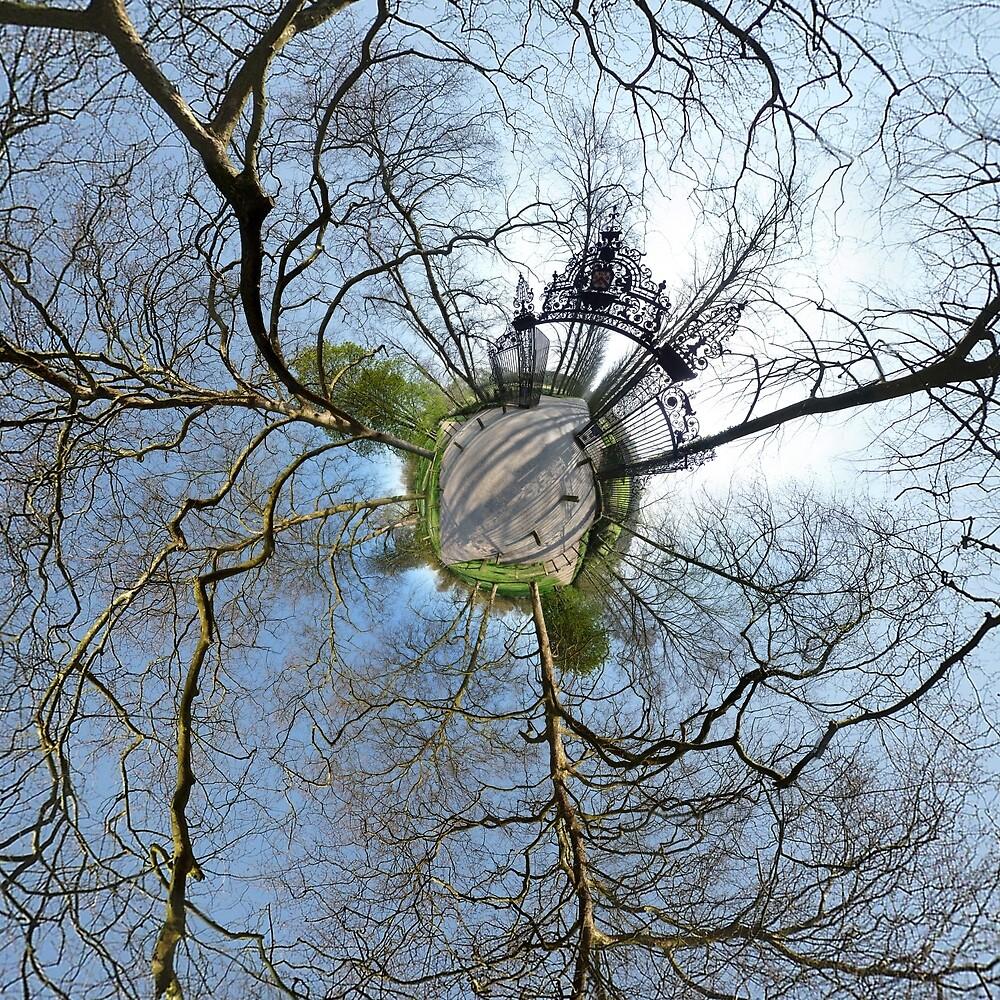 Cambridge Backs by miniplanet