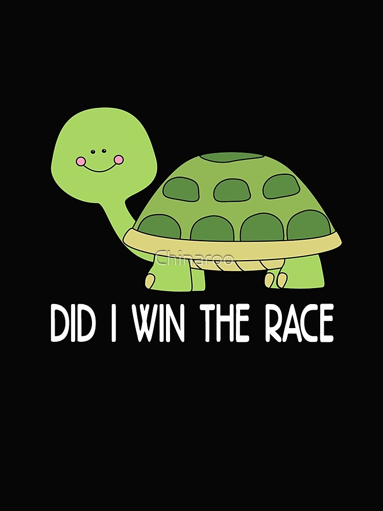 Funny turtle, Did I win the race, pets funny animal gift t shirts by Chinaroo