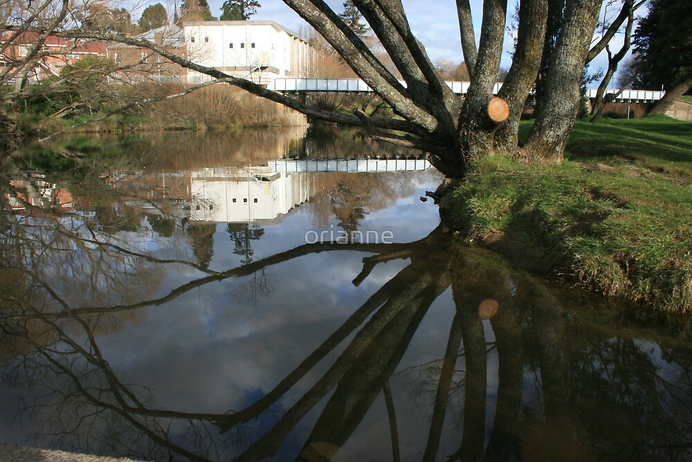 River Reflection by orianne