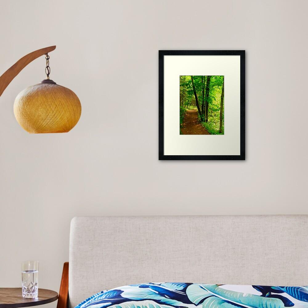 Your Path Framed Art Print