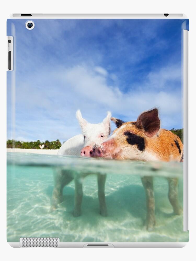 Cute Pigs in the sea by DV-LTD