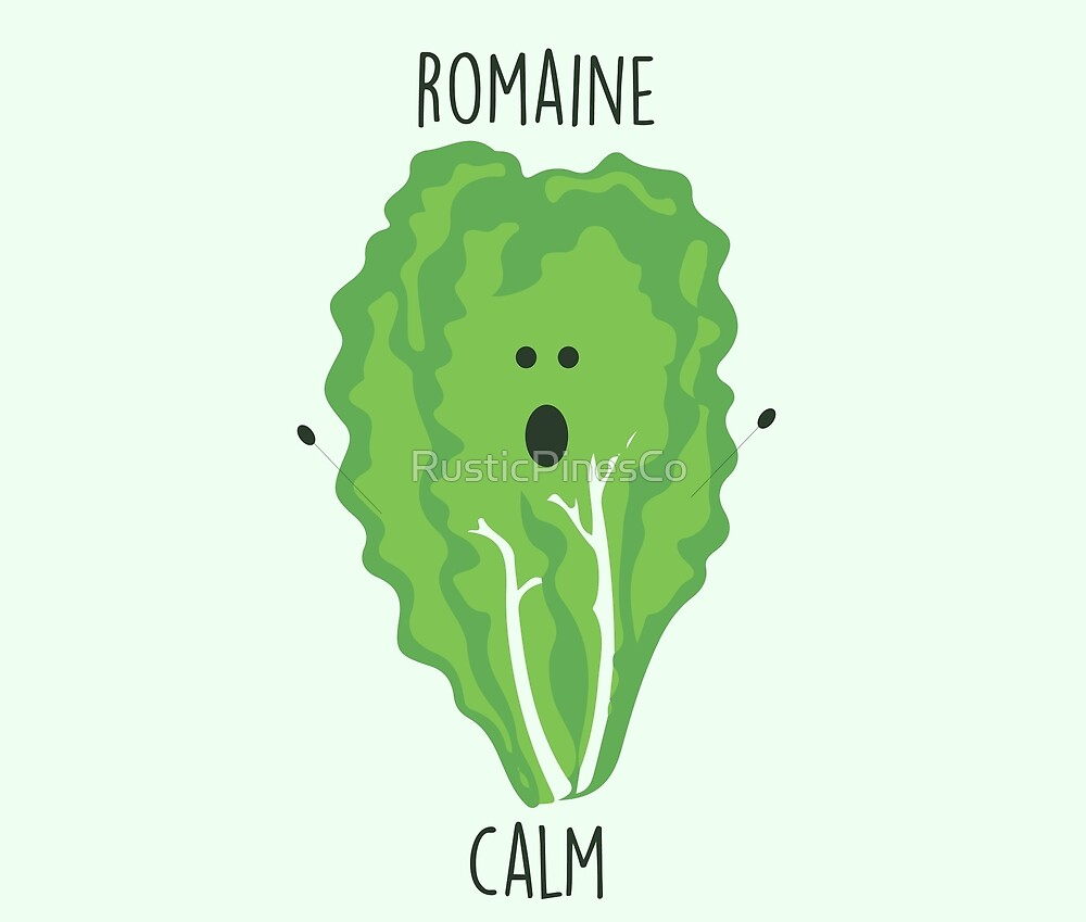 Romaine Calm // Happy Little Owl Collection by RusticPinesCo