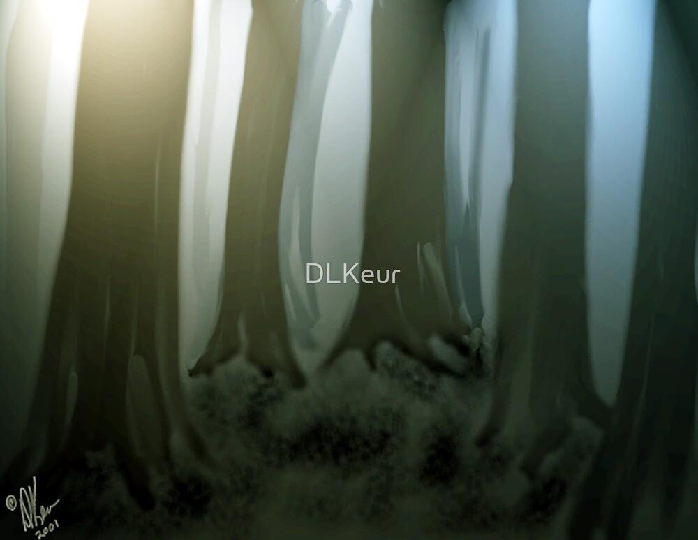 Deep Woods by DLKeur