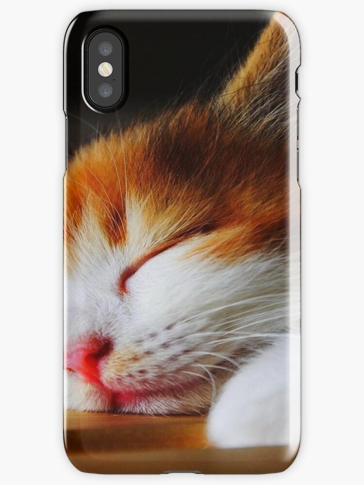 Cute Ginger and White Kitten Cat Sleeping by DV-LTD