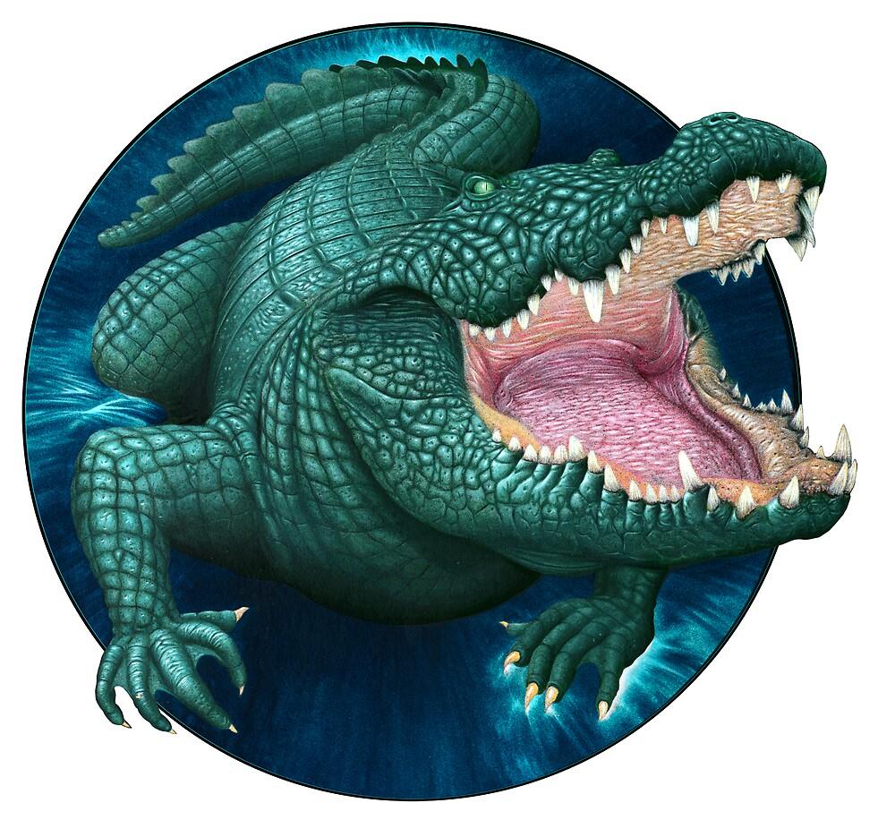 Crocodile by Graham Bliss