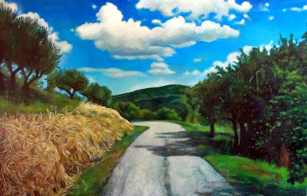 Strada del Trebbio Modigliana Italy by Patrizia Diamante