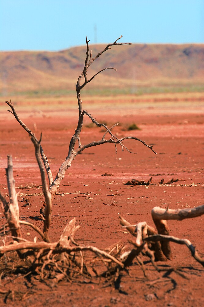 Pilbara Landscape 1 by Lauren Bruce