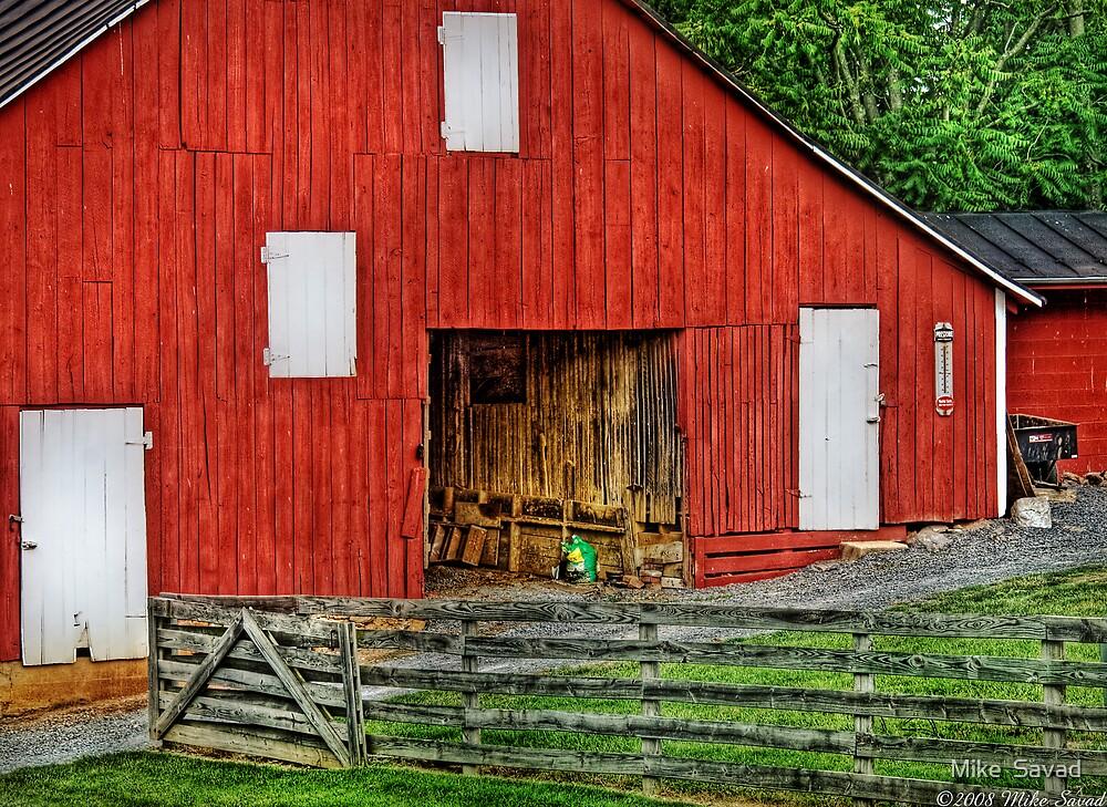 An old barn by Michael Savad