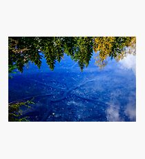 Reflections of Life Photographic Print