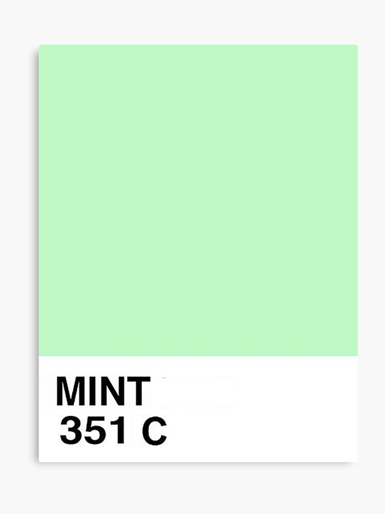d7d57a412f8e Pantone Mint Canvas Print. Pantone Mint by danibutera