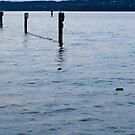 Bregenz, Lake Bodensee, Austria von Joachim Schlosser