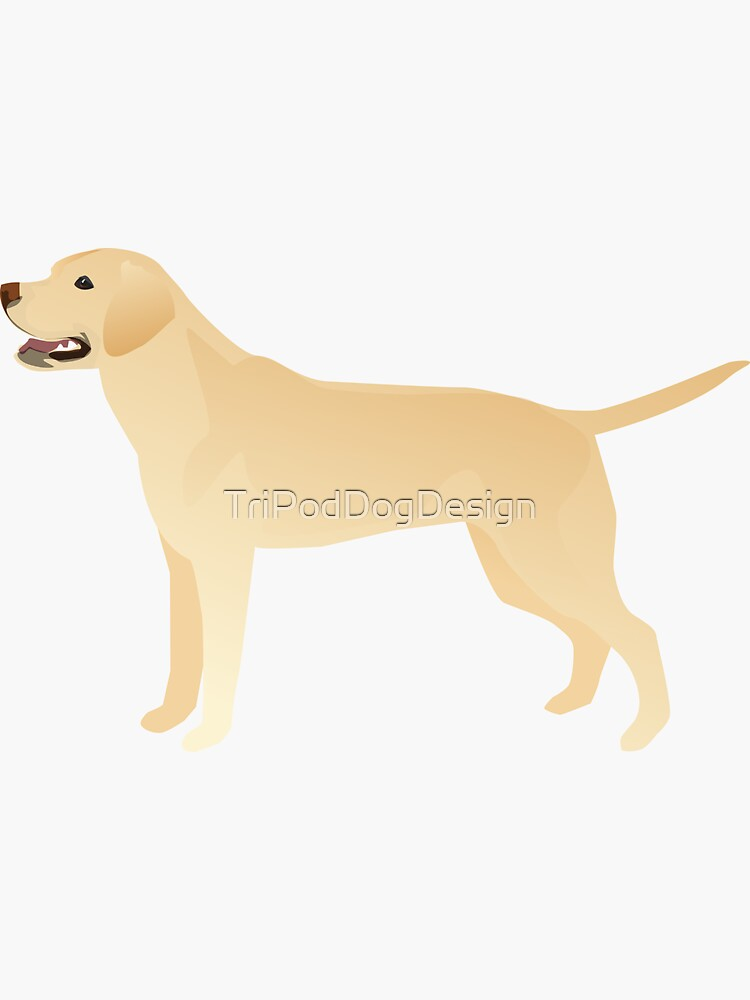 White Yellow Lab Basic Breed Silhouette Illustration by TriPodDogDesign