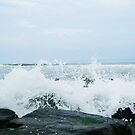 Crashing Waves by Taylor T