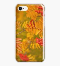 Mountain Ash  iPhone Case/Skin