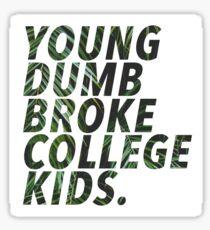 young dumb broke college kids Sticker