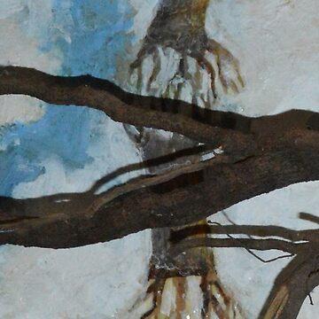 Root by NANCYMAUERMAN