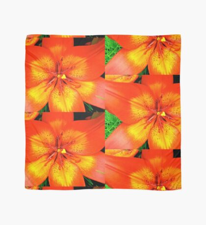 Orange Lily - all products Scarf