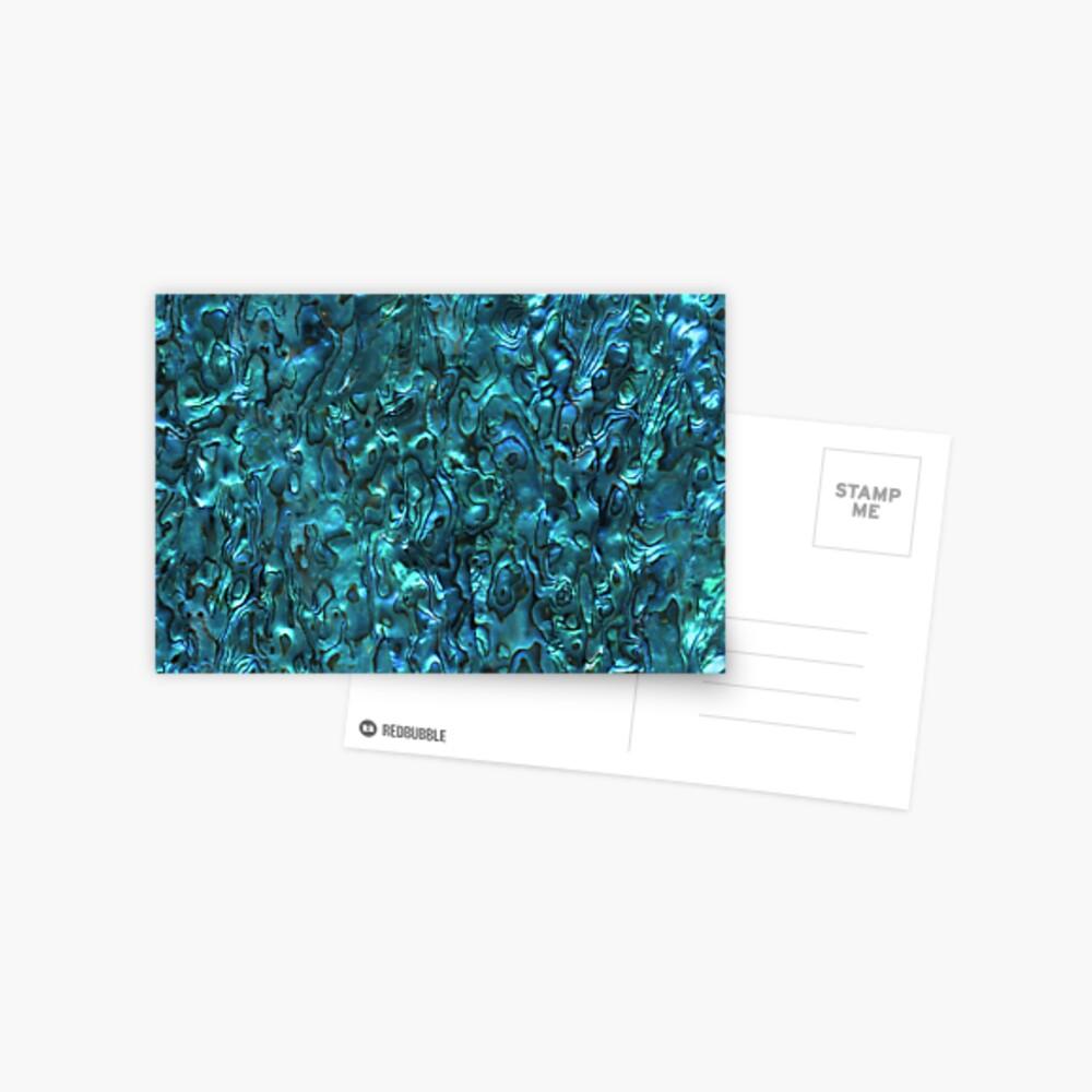 Abalone Shell   Paua Shell   Seashell Patterns   Sea Shells   Cyan Blue Tint    Postcard