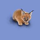 Caracal Cub by Rose Gerard