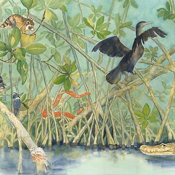 Mangroves by salamandaz