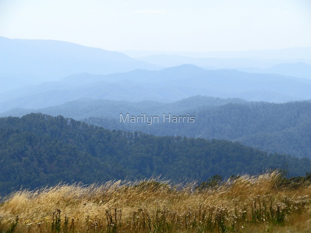 Misty Mountains - Victoria's High Country by Marilyn Harris
