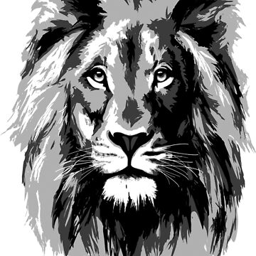 Lion Face by BorbaBacco